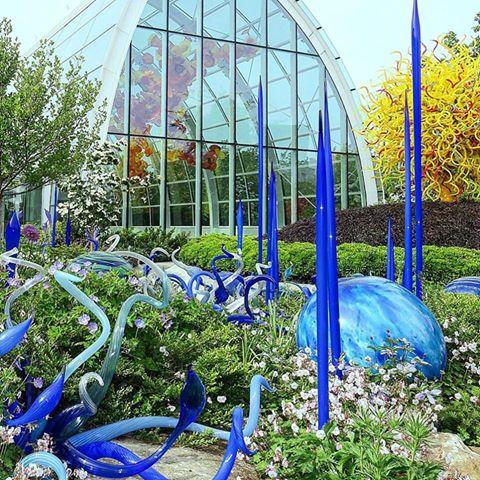 Glass Garden | WildPortraits
